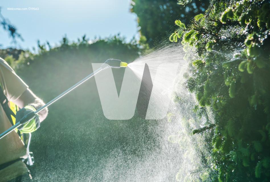 Gardener Insecticide Job