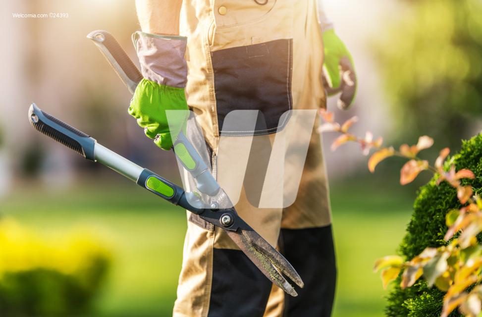 Gardener with Heavy Duty Garden Scissors in His Hand