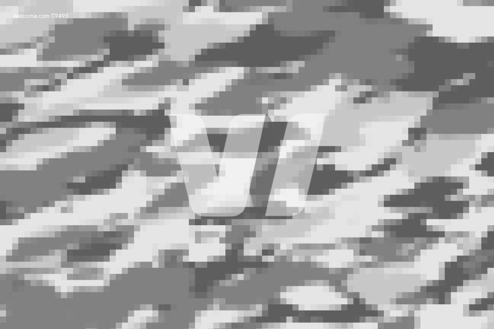 Pixel Gray Camouflage