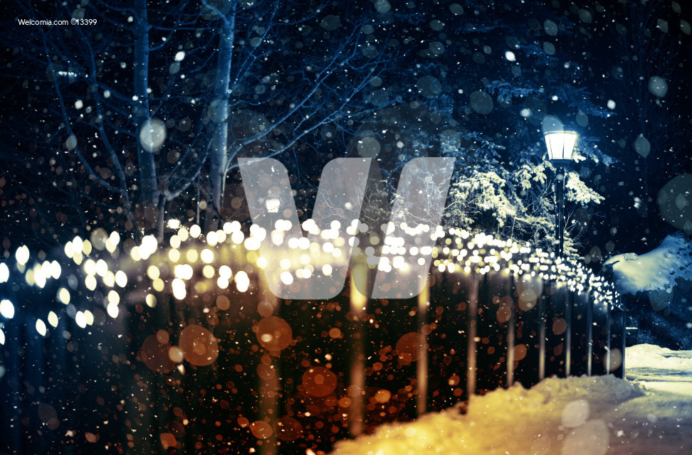 Holiday Lights Scenery