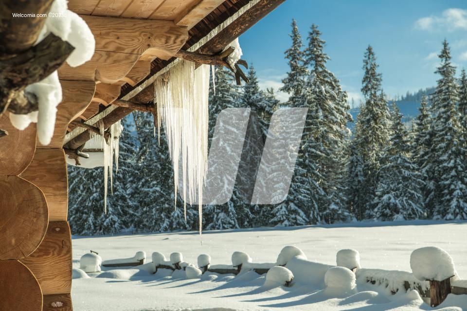Icicles Winter Landscape