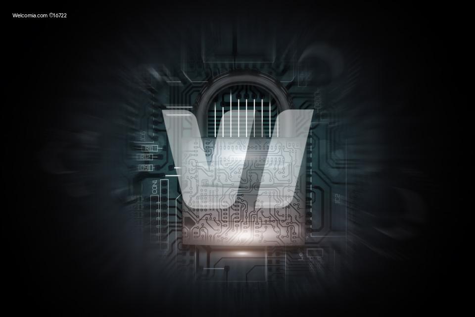 Internet Networks Safety