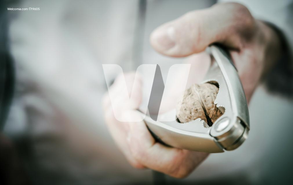 Nut Cracker in Chef Hand