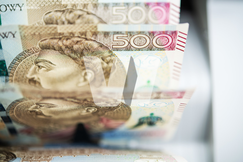 Polish Zloty Bills Count Inside Banknote Counter