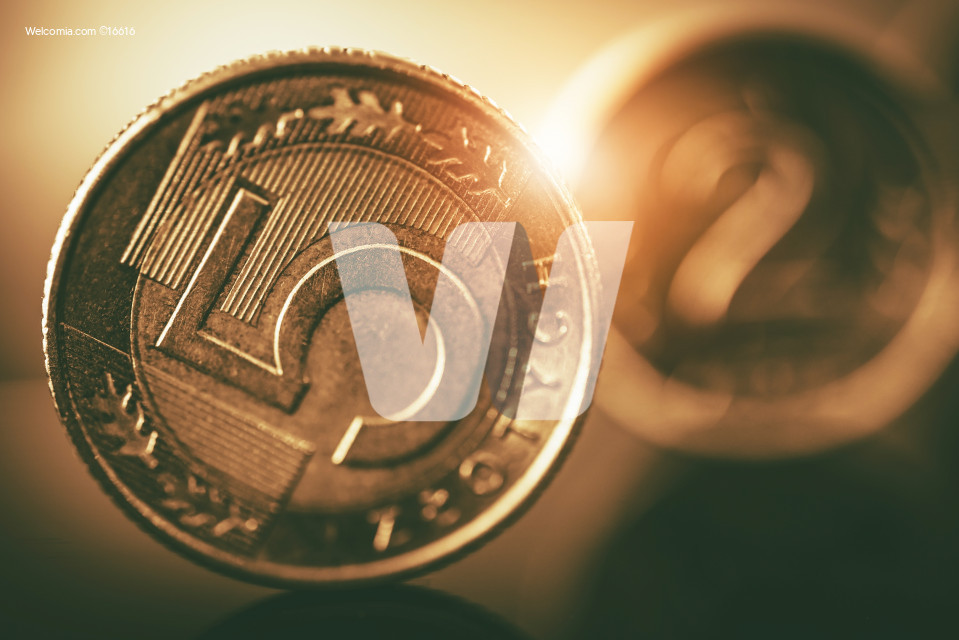 Polish Zloty Coins Closeup