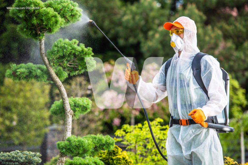 Professional Gardener Fungicide Garden Plants