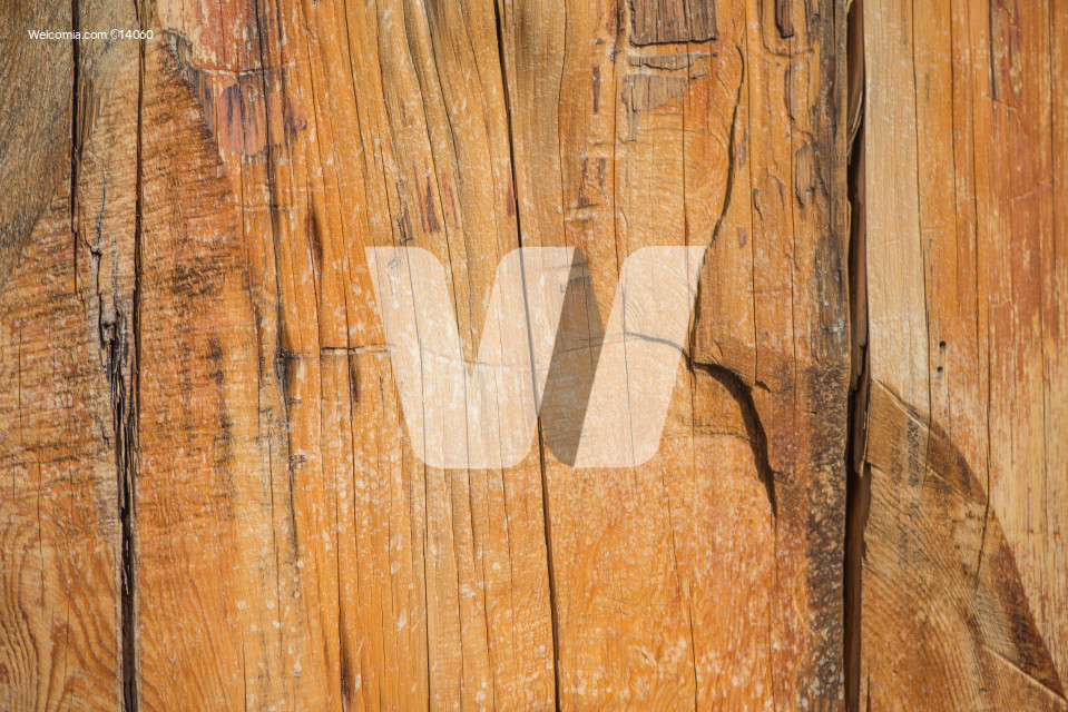 Raw Old Wood Background