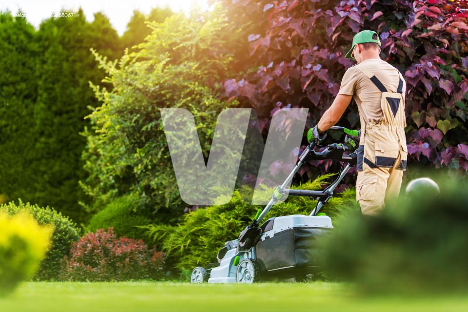 Residential Garden Worker Trimming Backyard Lawn