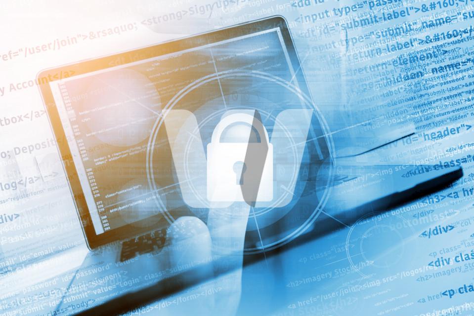 Safe Website Concept