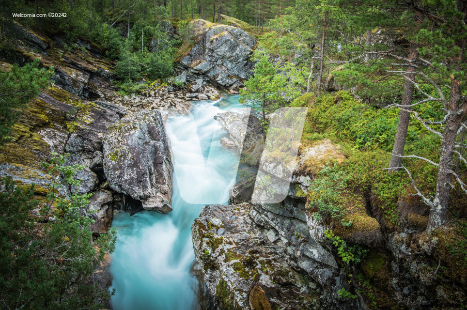 Scenic Alpine Creek