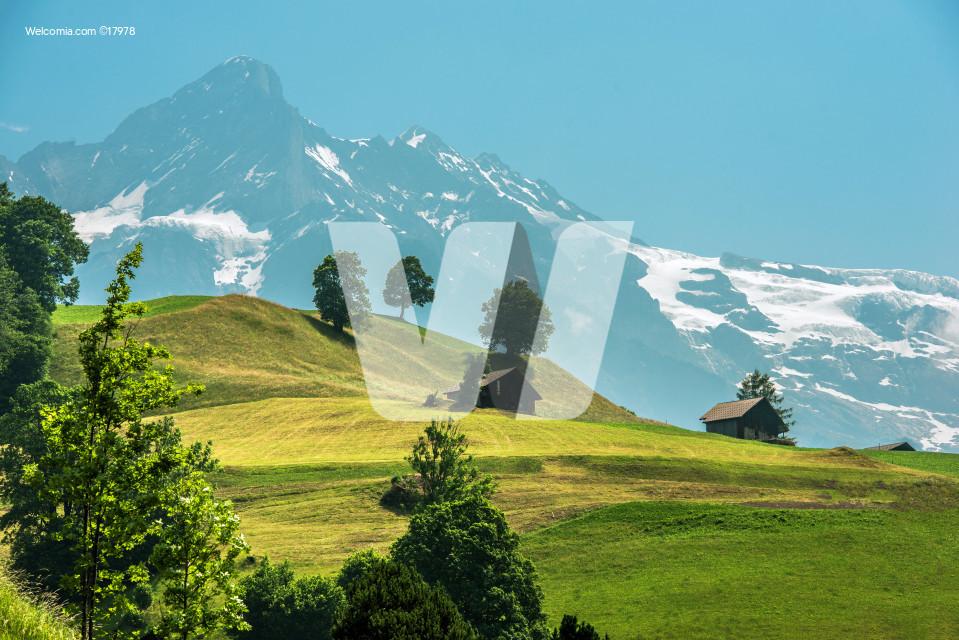 Scenic Switzerland Landscape
