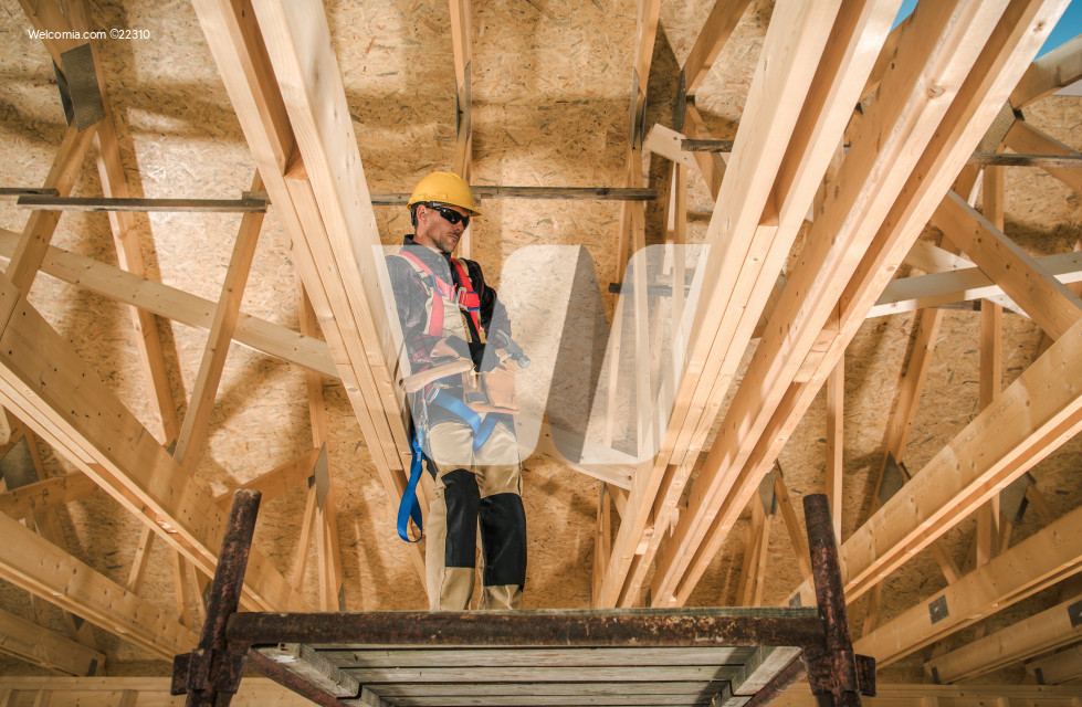 Skeleton Wood Construction