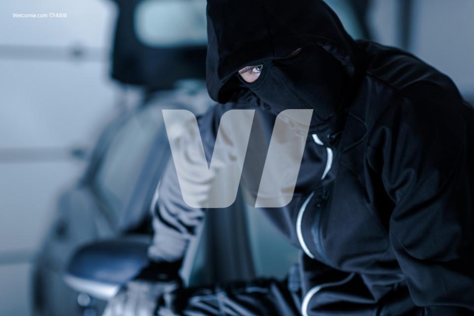 Successful Auto Theft Portrait