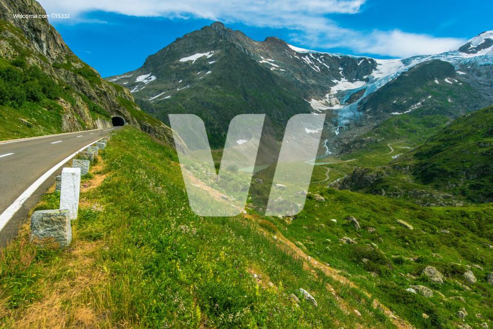 Summer Alpine Road