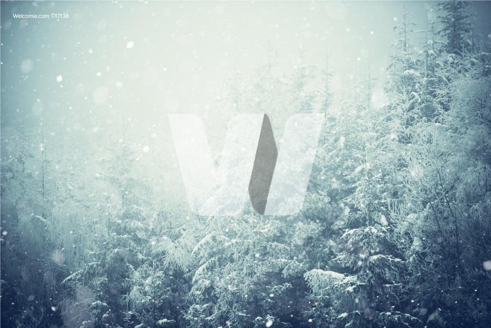 Winter Landscape Background