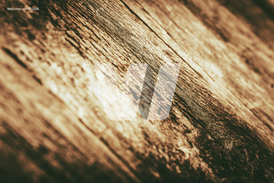 Wood Closeup with Shallow Depth of Field. Golden Brown Wood Background.