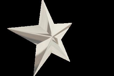 3D Chrome Star