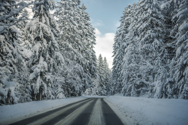 Country Road In Forest Covered With Snow.