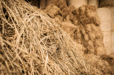 Close Up Of Stack Of Hay In Barn.