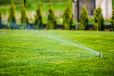 Sprinkler System Moisturizing Green Grass And Shrubs.