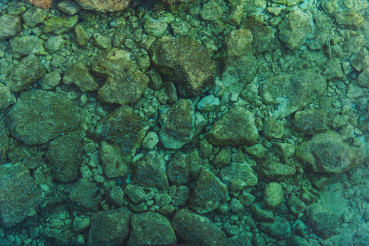 Rocky Sea Floor Bed