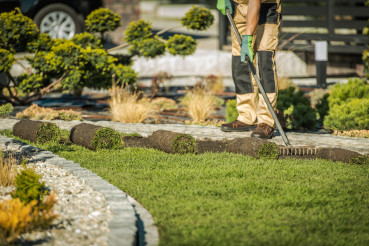 Landscaping Contractor Installing Sod For New Lawn.