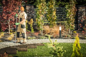 Male Gardener Installing New Turf In Residential Yard.