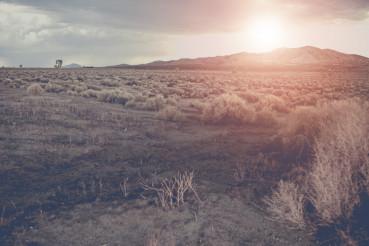 Arizona Raw Desert Landscape