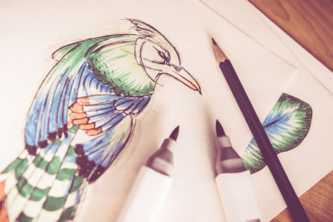 Artistic Birds Drawing