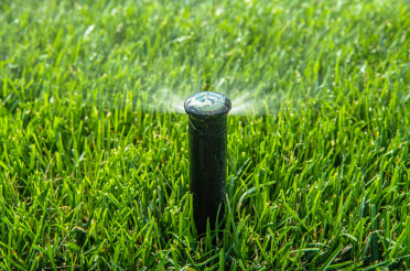 Automatic Pop Up Lawn Sprinkler Close Up