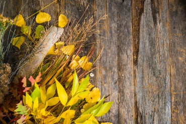 Autumn Bouquet Background