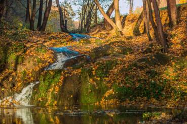Autumn Nature Scenery