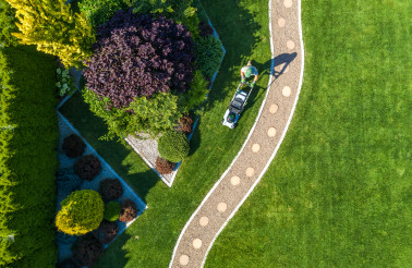 Backyard Garden Grass Mowing Aerial View