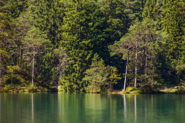 Bavarian Scenic Lake and Forest Line Germany