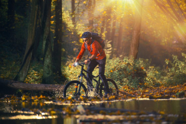 Bike Ride in the Autumn Forest