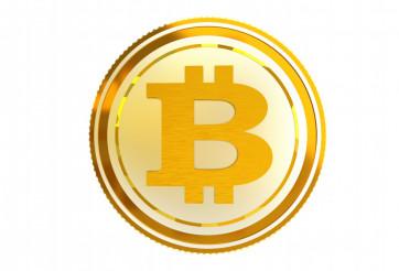 Bitcoin Coin Isolated