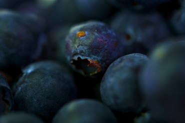 Blueberries Macro