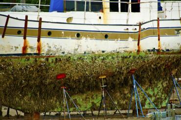 Boat in a Dock
