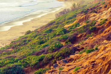 California Ocean Shore