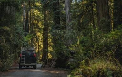 Camper Van Road Trip to the California Redwoods