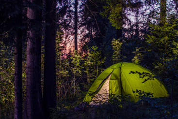 Camping in a Forest