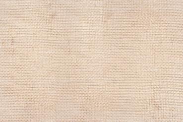 Canvas Texture Backdrop