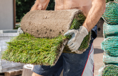 Caucasian Men Moving Rolls of Nature Grass Turfs
