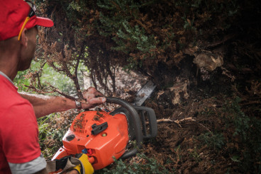 Caucasian Men with Chainsaw Cutting Out Wild Bushes