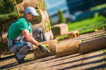 Caucasian Turf Grass Installer