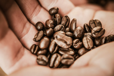 Coffee Beans in a Hand