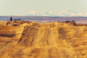 Colorado Countryside Road