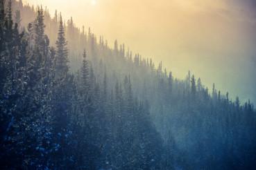 Colorado Winter Time