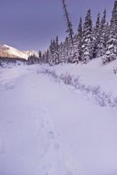 Colorado Winter Trail
