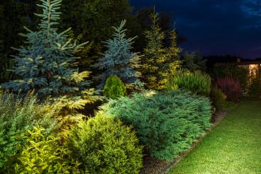 Colorful Illuminated Backyard Garden